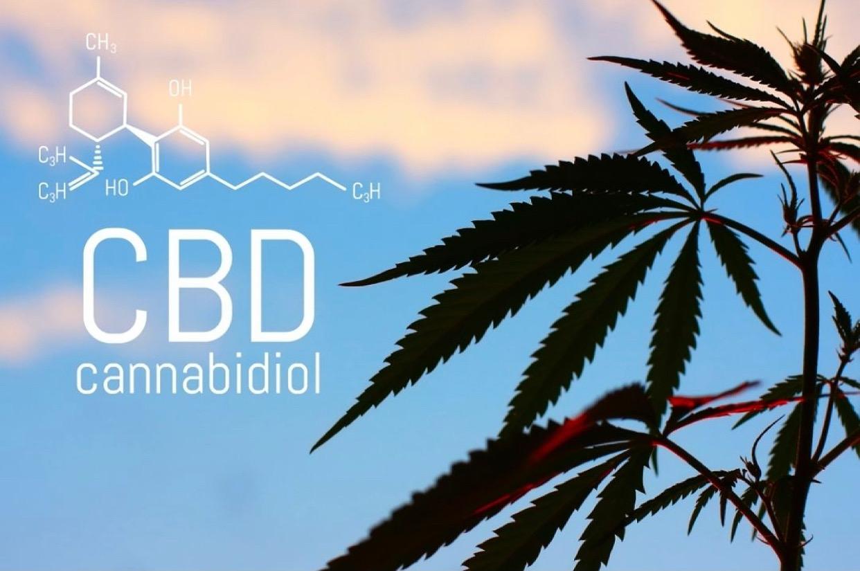 CBD – Hanfprodukte